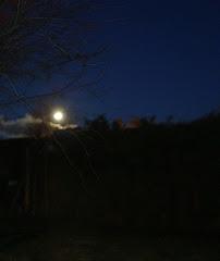 luna  madrugada