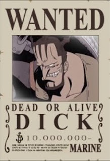 bounty dick one piece