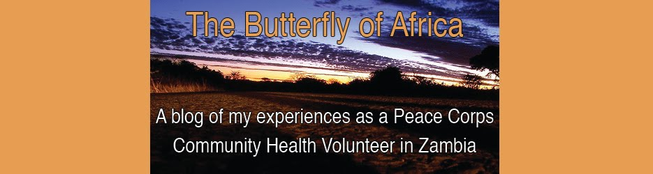 The Butterfly of Africa