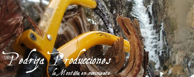 Pedriza Producciones