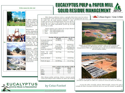 Successful Eucalyptus Pulp and Paper Mill Solid Residue Management / Eucalyptus Online Book, November 2008, by Celso Foelkel / Ecoefficacy, Ecoefficiency, Cleaner Production / Eucalyptus Wisdom from Brazil / Gestion exitosa de los residuos solidos de industrias de pulpa y papel de eucalipto / Libro Online Eucalipto, Noviembre 2008, por Celso Foelkel / Ecoeficacia, Ecoeficiencia, Produccion Mas Limpia / Sabiduría eucalíptica desde Brasil