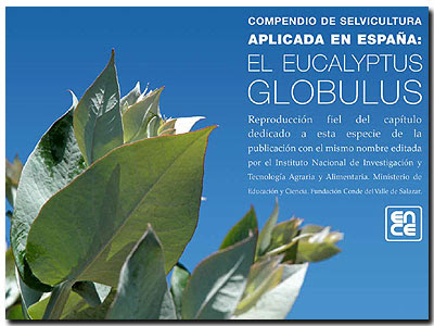 Eucalyptus globulus Silviculture in Spain, by Gabriel Toval, Gustavo López, Federico Ruíz and Reyes Alejano, ENCE Forestry Research, Spain / Silvicultura aplicada al Eucalyptus globulus en España, por Gabriel Toval, Gustavo López, Federico Ruíz y Reyes Alejano, Grupo Empresarial ENCE, División de Investigación y Tecnología DIT-ENCE / Gustavo Iglesias Trabado, GIT Forestry Consulting - Eucalyptologics, Lugo, Galicia, Spain / Information Resources on Eucalyptus Cultivation Worldwide / Recursos de Información sobre el Cultivo del Eucalipto en el Mundo