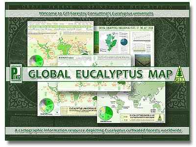 Global Eucalyptus Map 2009 / A cartographic information resource depicting Eucalyptus plantations around the world / Mapa Global de Cultivo del Eucalipto 2009 / Un recurso de informacion geografica mostrando las plantaciones de eucalipto en el mundo / Gustavo Iglesias Trabado, Roberto Carballeira Tenreiro & Javier Folgueira Lozano / GIT Forestry Consulting SL, Consultoría y Servicios de Ingeniería Agroforestal, Galicia, España, Spain / Eucalyptologics, information resources on Eucalyptus cultivation around the world / Eucalyptologics, recursos de informacion sobre el cultivo del eucalipto en el mundo