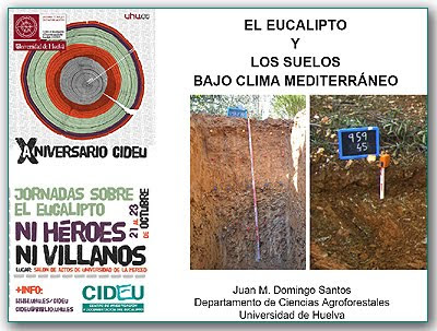 Eucalyptus and soils in Mediterranean Climates by Juan Domingo Santos / Eucalyptus y los suelos en Climas Mediterraneos, por Juan Doming Santos / Gustavo Iglesias Trabado, Roberto Carballeira Tenreiro and Javier Folgueira Lozano / GIT Forestry Consulting SL, Consultoría y Servicios de Ingeniería Agroforestal, Lugo, Galicia, España, Spain / Eucalyptologics, information resources on Eucalyptus cultivation around the world / Eucalyptologics, recursos de informacion sobre el cultivo del eucalipto en el mundo