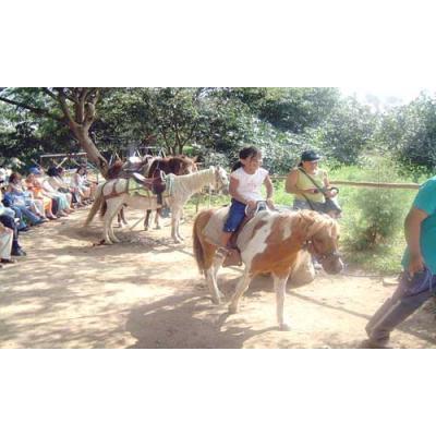 nuestros paseos a caballo