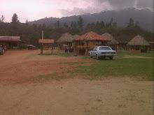 Area de Bohios