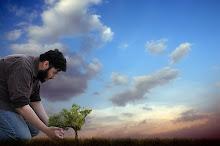 A world of green muslims