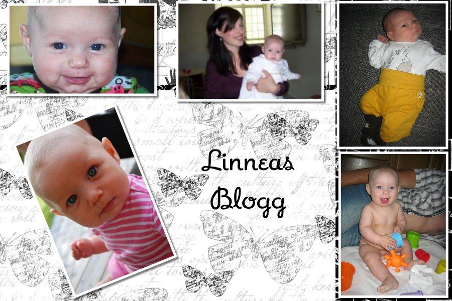 linnéas blogg
