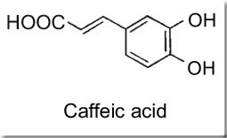 CaffeicAcidA.jpg