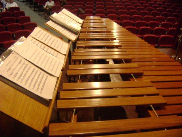 Soy tocador de Marimba, si senor!