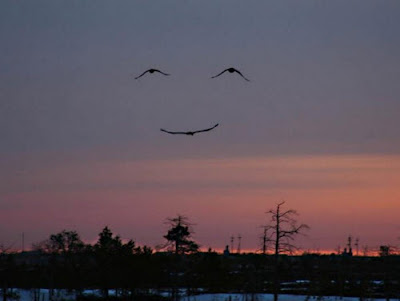 La madre naturaleza nos sonrie...