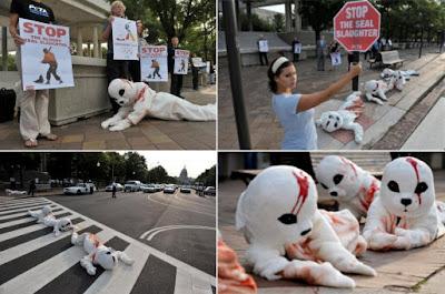 Protesta por la matanza de focas en Canada
