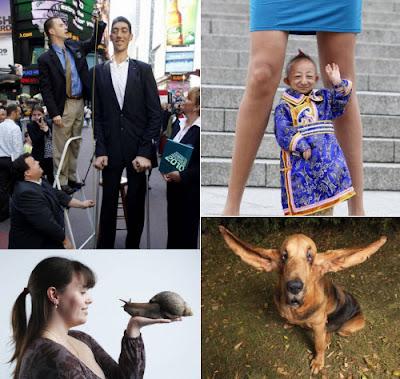 El hombre más alto, el hombre más bajo, el perro con las orejas más largas y el caracol más grande del mundo