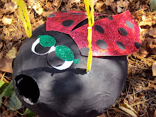 Lady bug pinata!