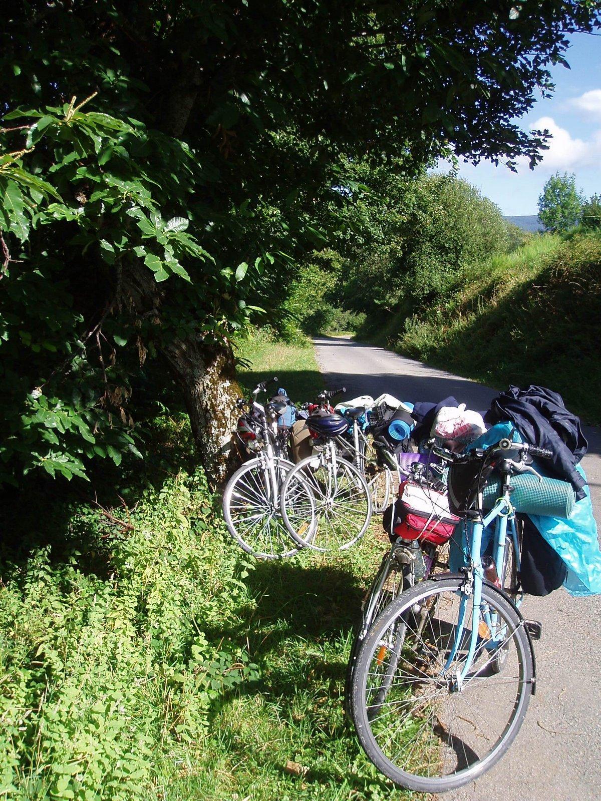 En bici por Ancares