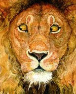 lion and the mouse jerry pinkney wordless picture book review