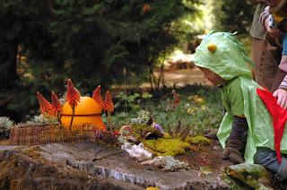 live oak preschool live oak waldorf school pumpkin patch a mini 323
