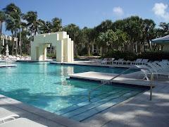 Pool At Hyatt Regency