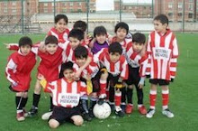 categoria 2000 ( turneo liga futbol sur )