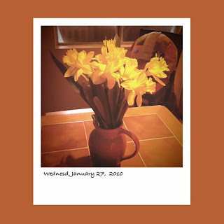 yellow daffodils iPhone polaroid
