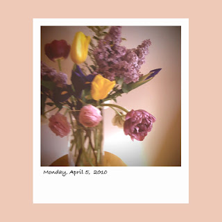 spring bouquet, mauve tulip lilacs iphone apps iphoneography iPhone polaroid photography