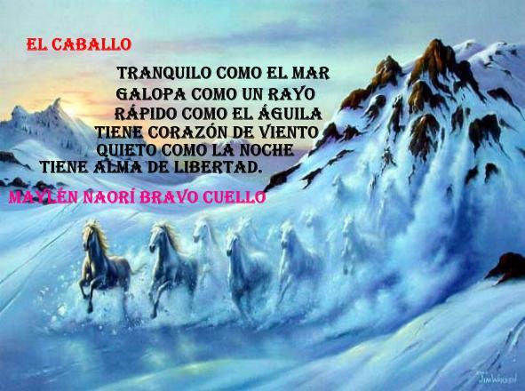 Poema de Maylén Naorí Bravo Cuello