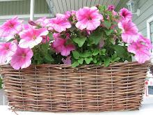 Kukkaloistoa kesältä