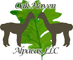 Oak Haven Alpacas, LLC, & Oak Haven Sheep, LLC