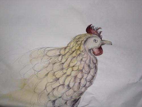 [chick1]