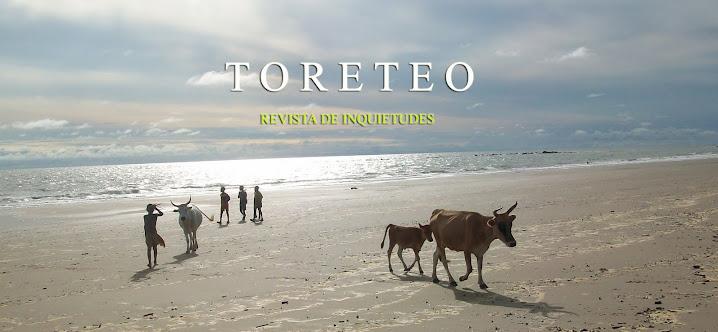 TORETEO - Revista de Inquietudes