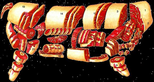 Cuisine du coeur diff rentes parties du boeuf - Cuisiner du boeuf en morceaux ...
