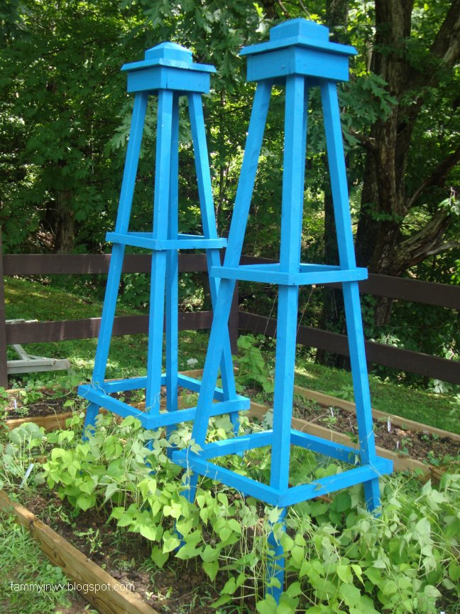 Obelisk on pinterest obelisks trellis and clematis for Garden obelisk designs