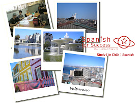 Study Abroad Chile