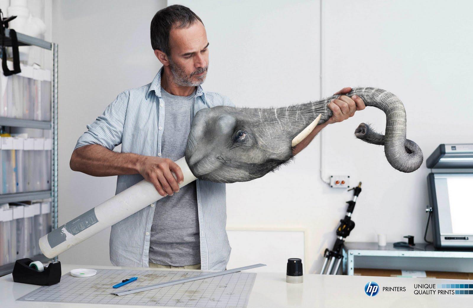 http://3.bp.blogspot.com/_42nL05s3A-8/S-hQcqcmgEI/AAAAAAAACmI/GkoGveYjSy4/s1600/hp-elephant.jpg