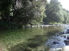 Rio Huequecura