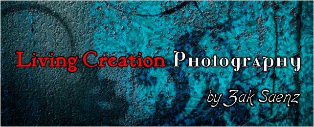 Zak Saenz Photography