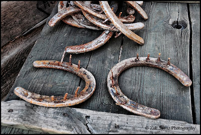 [Image: Old+Horseshoes+2.jpg]