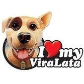 Orgulhosamente Vira-Lata