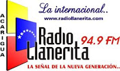 Llanerita 94.9 FM