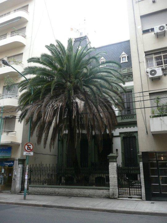 Rincones historias y mitos de buenos aires la casa de la - La casa de las palmeras ...