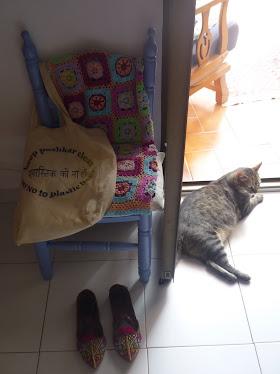 Padmini también quiere Pushkar limpia!