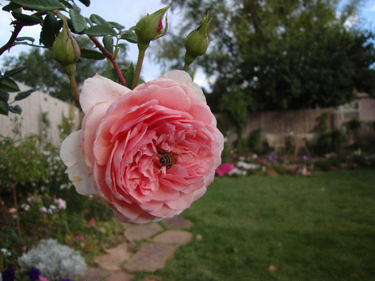 Abraham Darby and Friend
