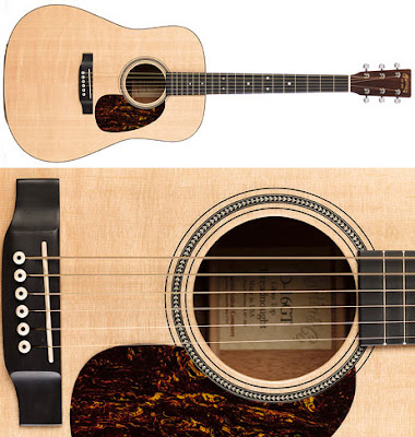 The Steel String Acoustic Guitars type