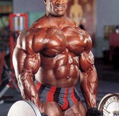 [biceps.jpg]