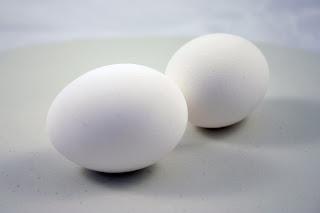 Ägglossning utan ägg