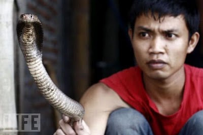 Snake Burger Cultural Preferences In Indonesia