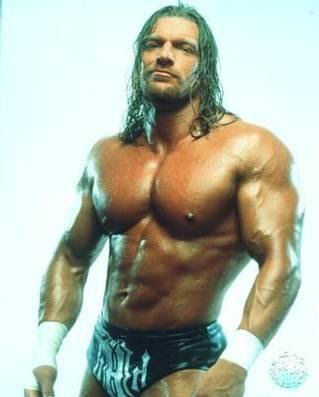 WWE Fighter Triple H