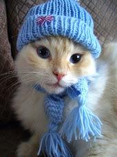 Come una sciarpa