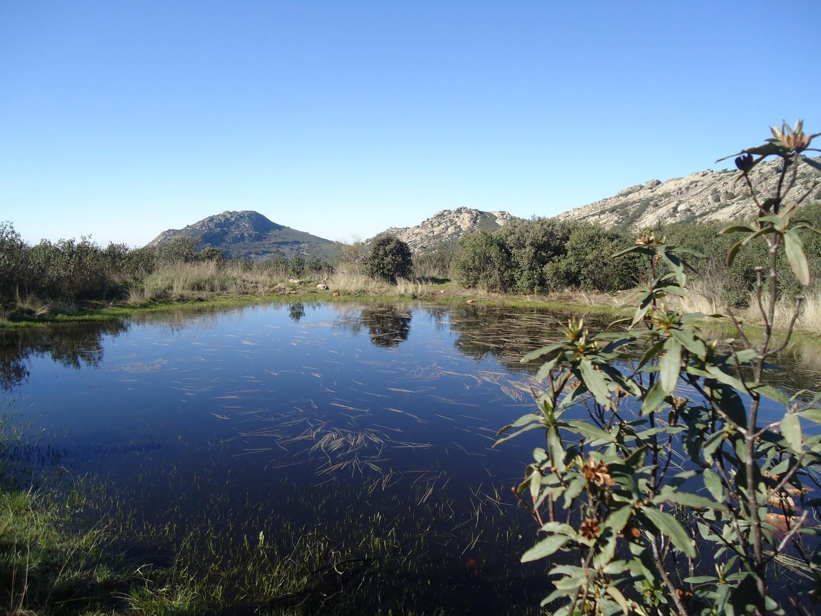 La Laguna del Tesorillo