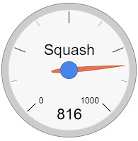 On hour of playing squash can burn off over 800 calories